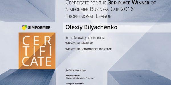 img_L_4_2194_14609751414_Bronze-sertificates-Pro-L