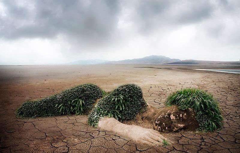 15 квітня 2021 року відбудеться Всеукраїнська конференція «Сучасні проблеми екології»