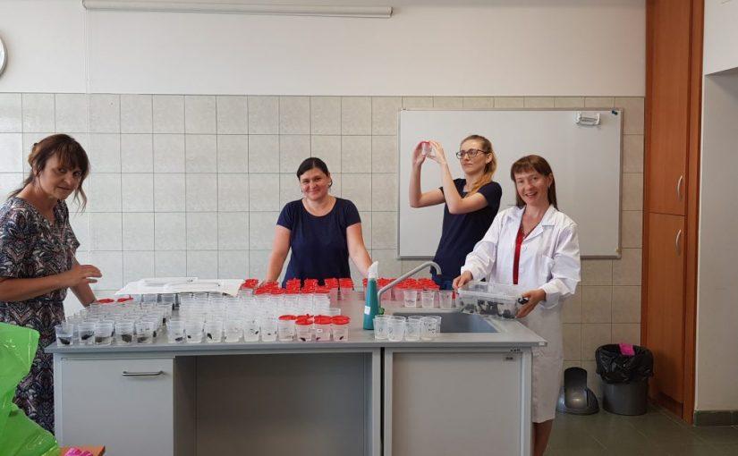 Професорка кафедри екології, д.б.н. Олена УВАЄВА пройшла наукове стажування в місті Торуні (Польща)